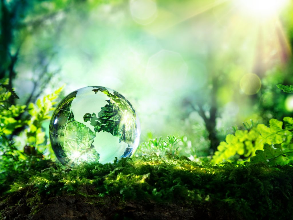 World Environment Day 2019 - National Awareness Days Events