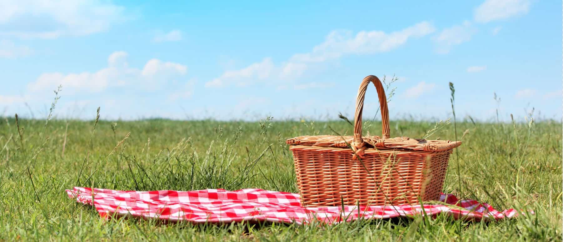 Αποτέλεσμα εικόνας για picnic