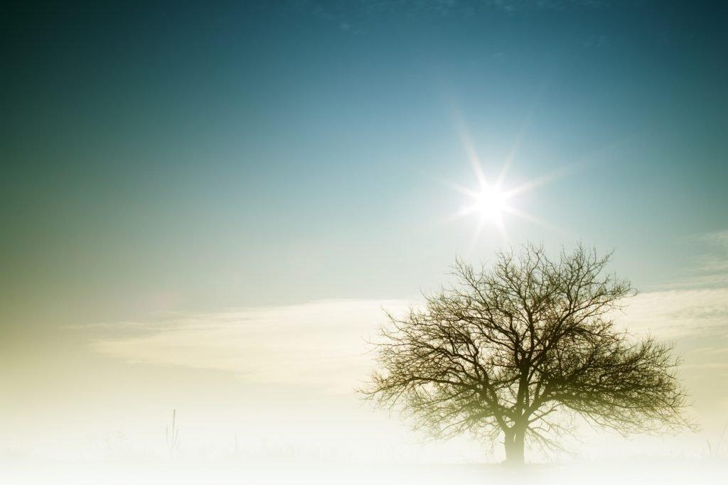 2020 Winter Solstice.December Solstice National Awareness Days Events Calendar