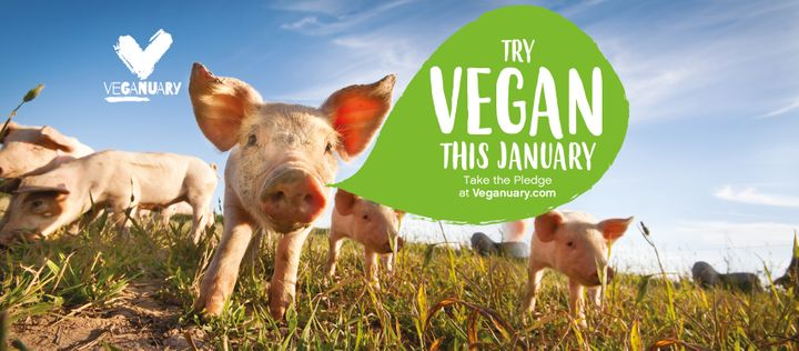 Image result for veganuary 2020
